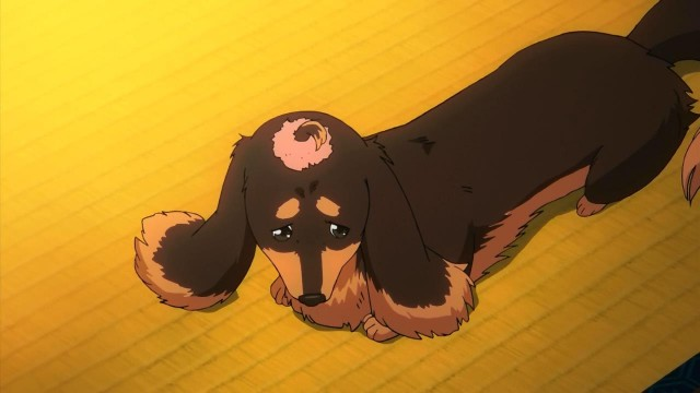 [HorribleSubs] Inu to Hasami wa Tsukaiyou - 01 [720p].mkv_snapshot_20.48_[2013.07.04_22.41.17]