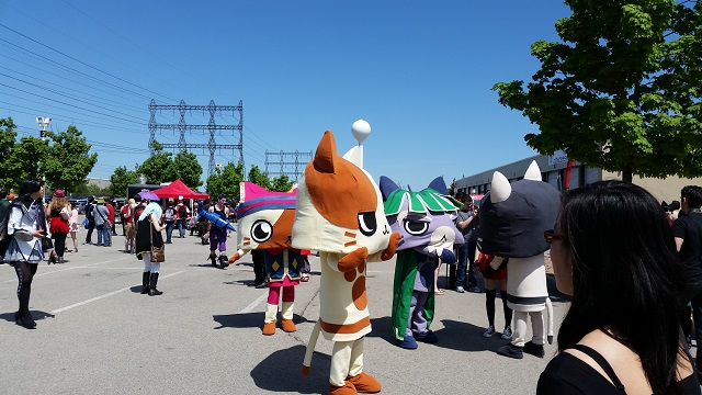 Anime_North_2014_-_Saturday_-_Felynes_(Monster_Hunter)