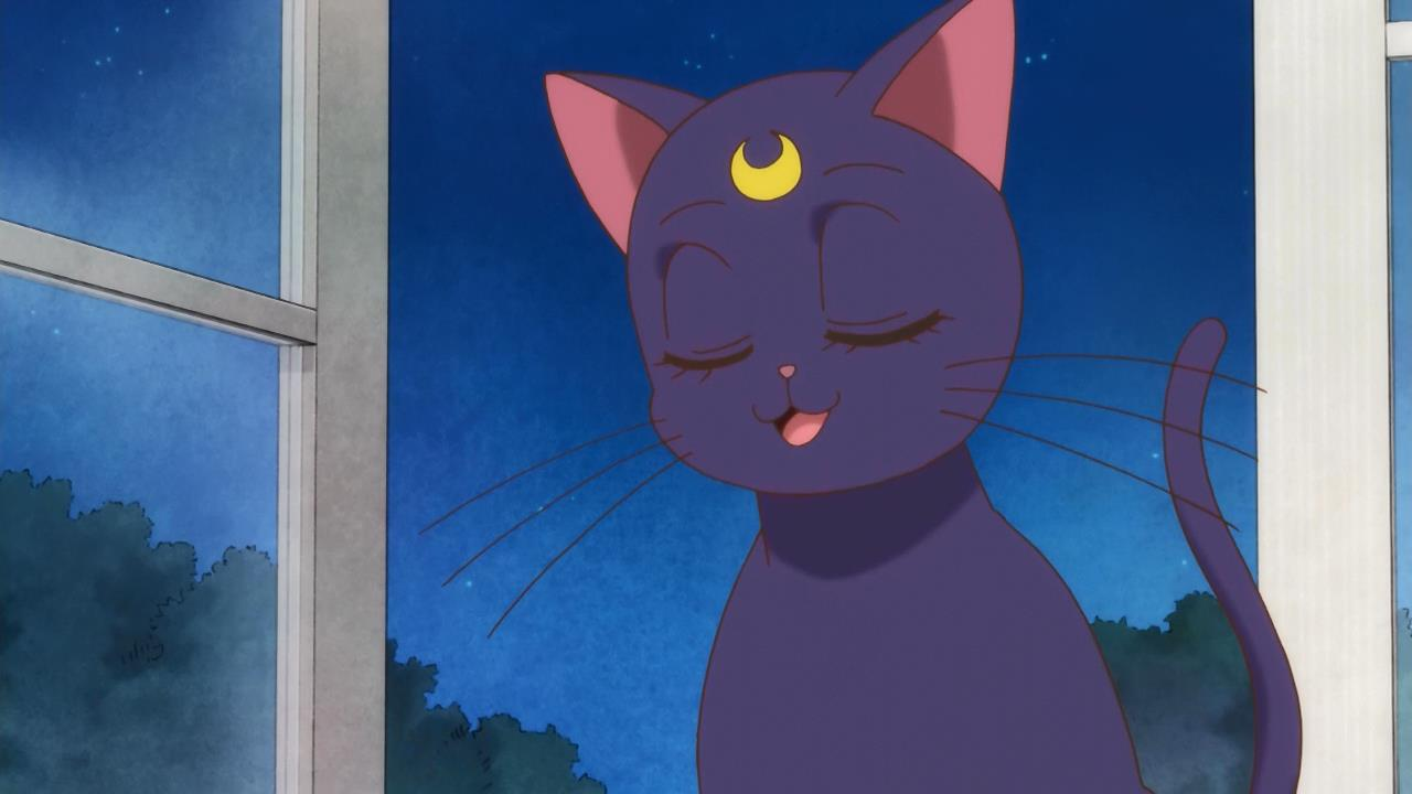Translation Party: [Baaro vs Commie vs Hatsuyuki vs HorribleSubs] Sailor Moon Crystal (Episode 01)